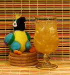 Potted Tepache Parrot